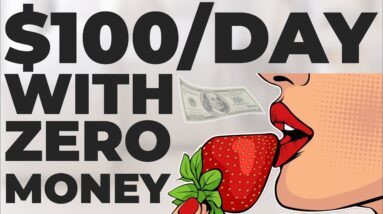 How to Make $100 Per Day Online With Zero Money